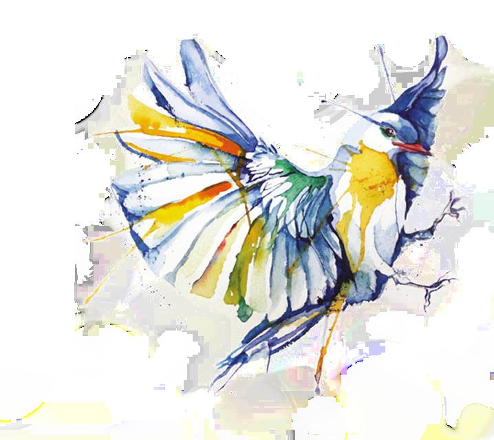 Psychologie biodynamique, mon approche, par Joëlle Le Goff, thérapeute psycho-corporelle à Vauhallan, aquarelle multicolore envol de colombe.